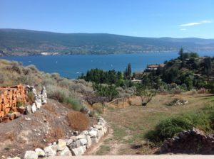 View in summerland